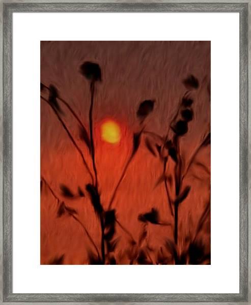 Left-handed Sundown Framed Print