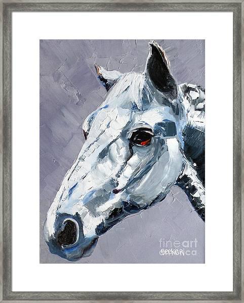 Legend - Sport Horse Framed Print