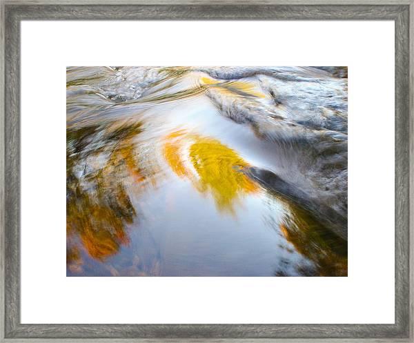 Leibert 19 Framed Print