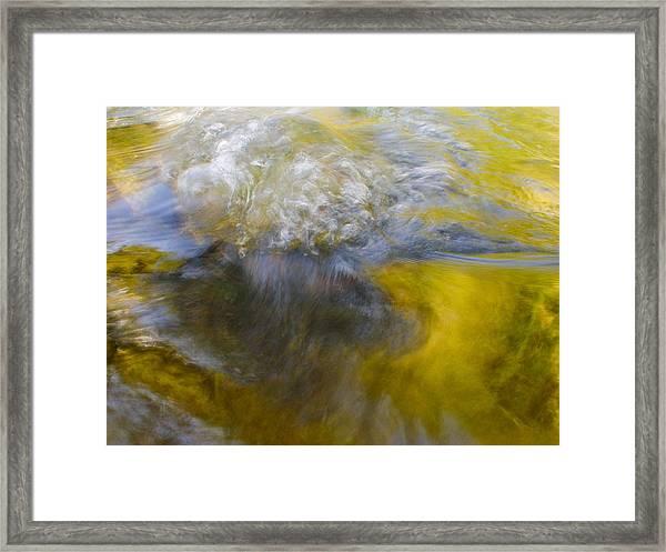Leibert 21 Framed Print