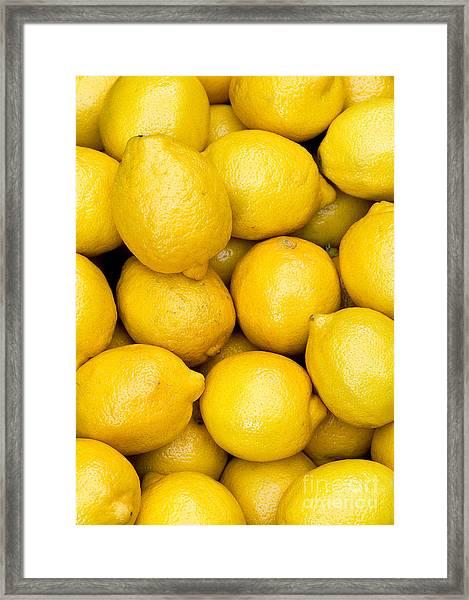 Lemons 02 Framed Print