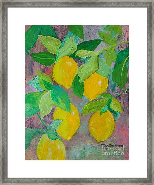 Lemons On Lemon Tree Framed Print