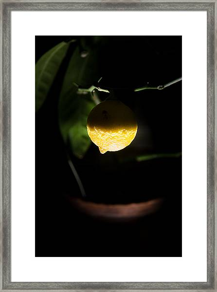 Lemon's Planet Framed Print