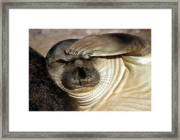 Let Me Think... Framed Print
