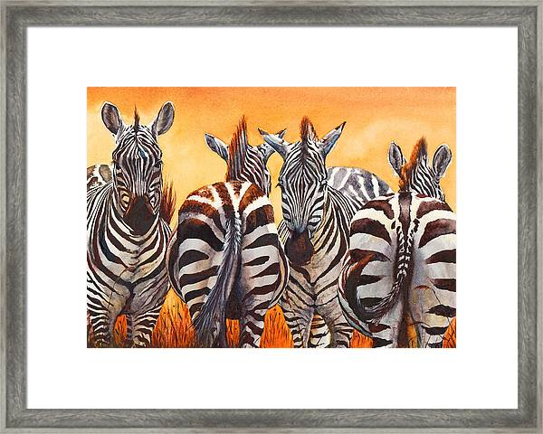 Lets Face It We Are Lost Framed Print