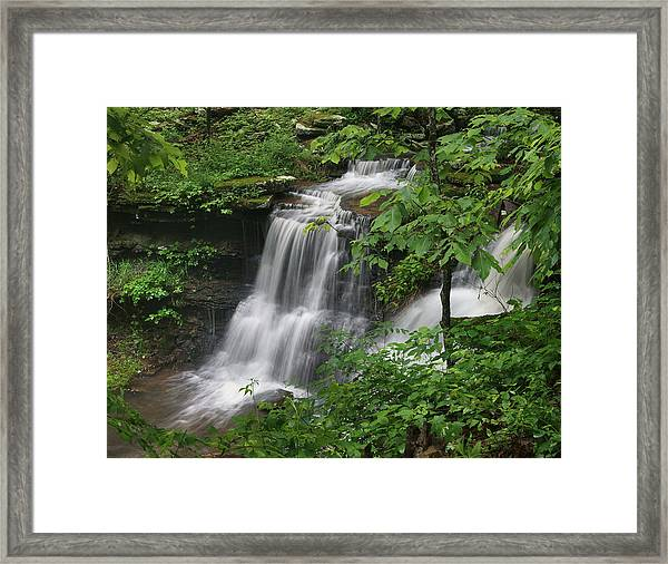 Lichen Falls Ozark National Forest Framed Print