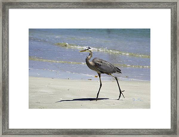 Lido Beach Blue Framed Print