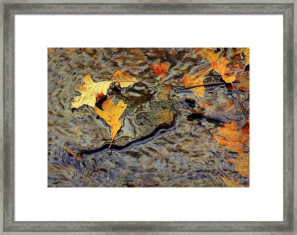Life Flows Framed Print