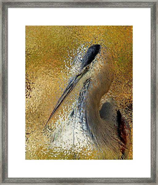 Life In The Sunshine - Bird Art Abstract Realism Framed Print