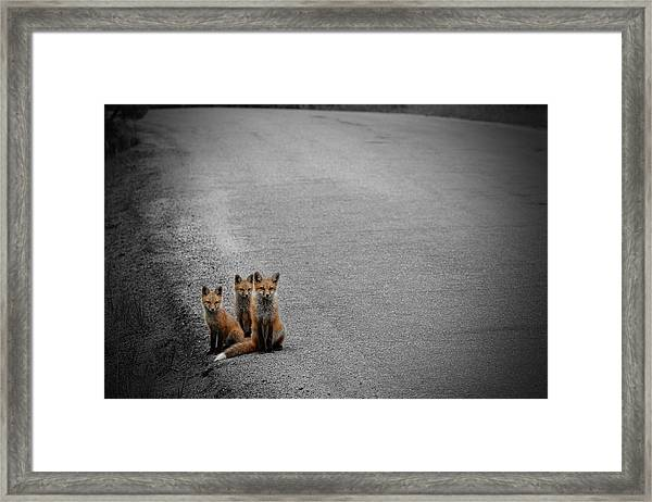 Life Is An Unknown Highway Framed Print
