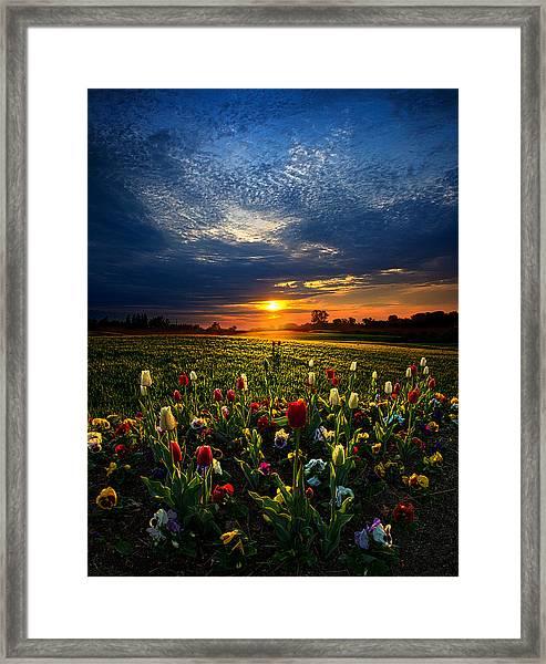 Lifetimes Framed Print