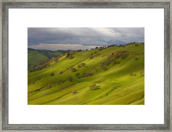Light And Shadows On A Green Hillside Framed Print