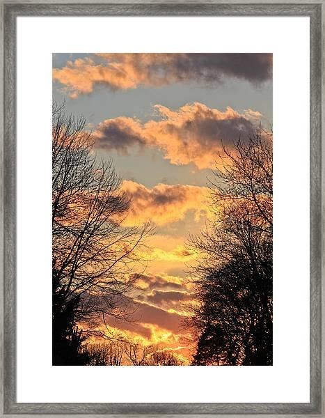 Light Catcher Framed Print