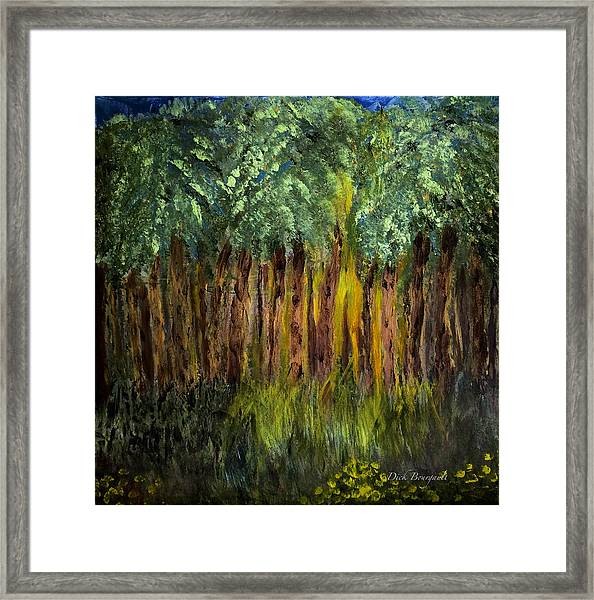 Light In The Forest Framed Print