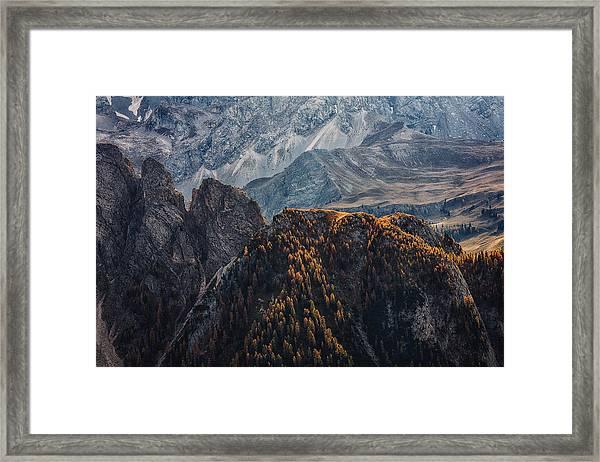 Light Of Autumn Framed Print by Uschi Hermann