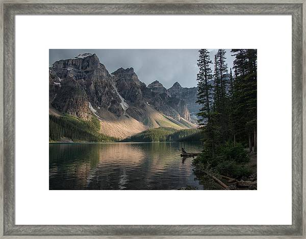 Light Play Framed Print