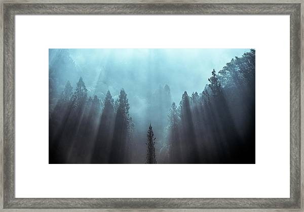 Light To Be Believed Likely Framed Print