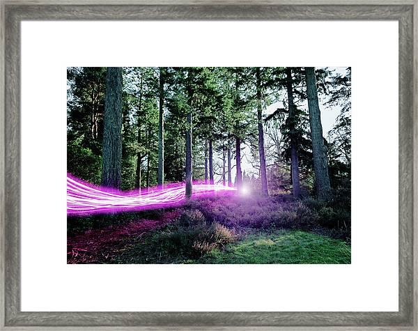 Light Trails Passing Through Woods Framed Print