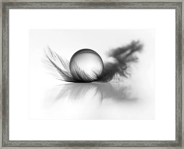 Lightness Framed Print