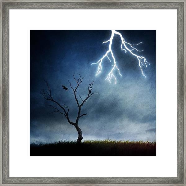 Lightning Tree Framed Print by Sebastien Del Grosso