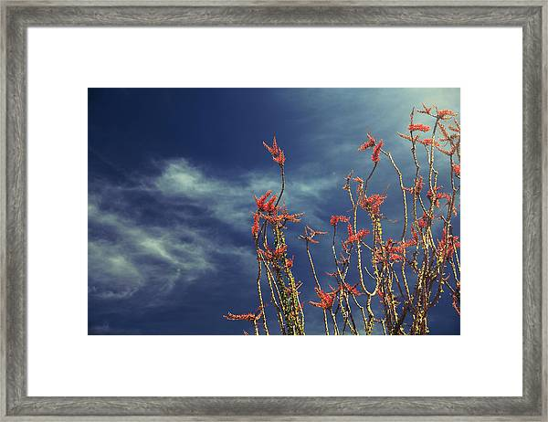 Like Flying Amongst The Clouds Framed Print