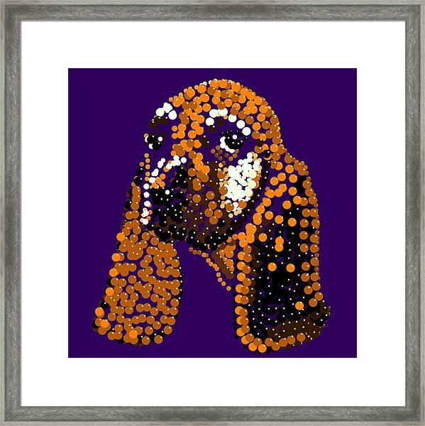 Li'l Jill Bedazzled Framed Print