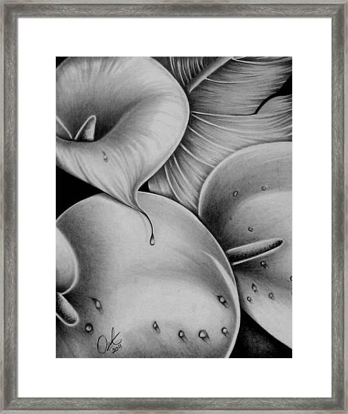 Lilies 3 Framed Print