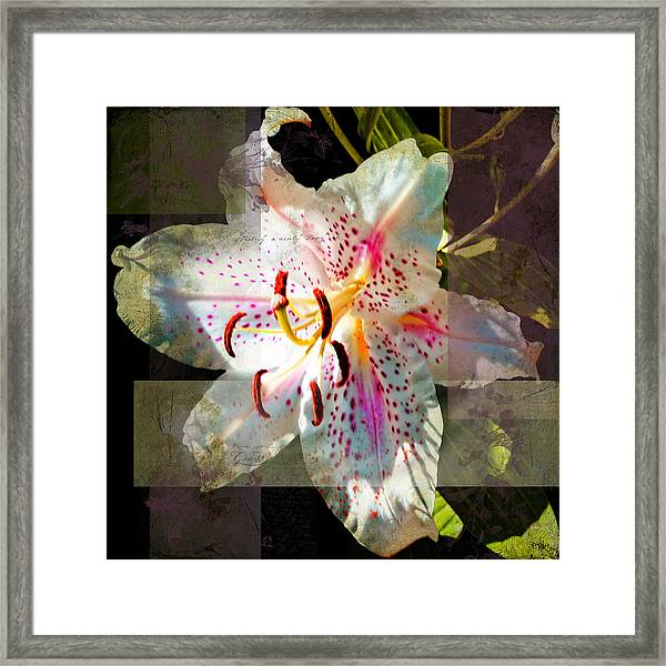 Lily From Whitefish Point Michigan Framed Print