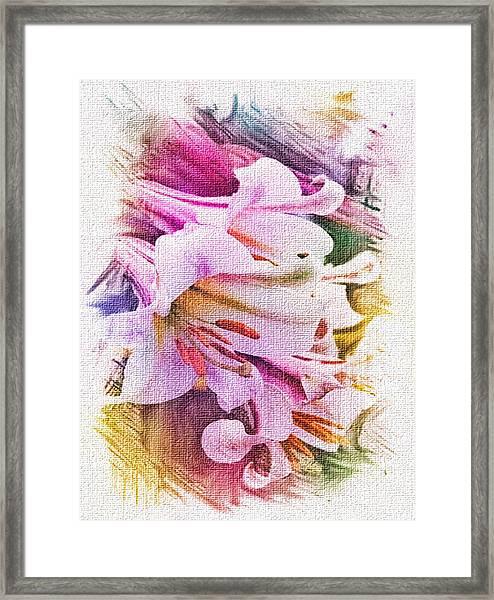 Lily Ventures Framed Print by Dennis Buckman