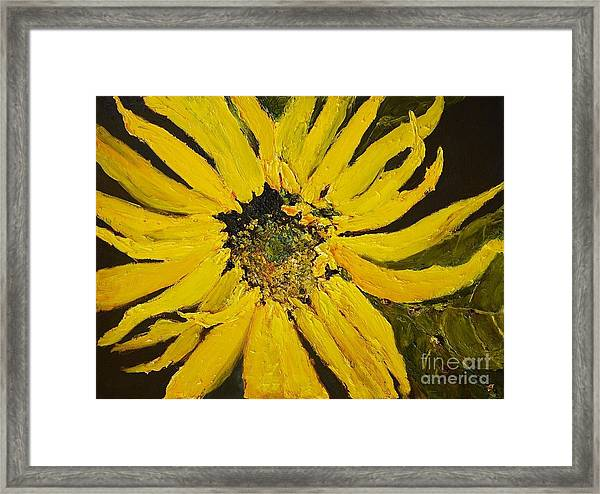 Linda's Arizona Sunflower 2 Framed Print