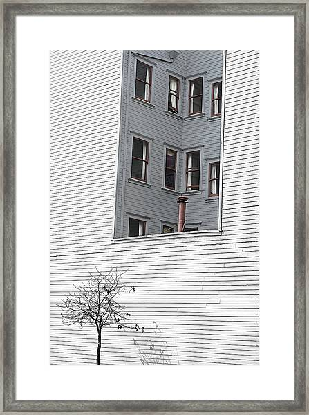 Lines Shapes Shadow Framed Print