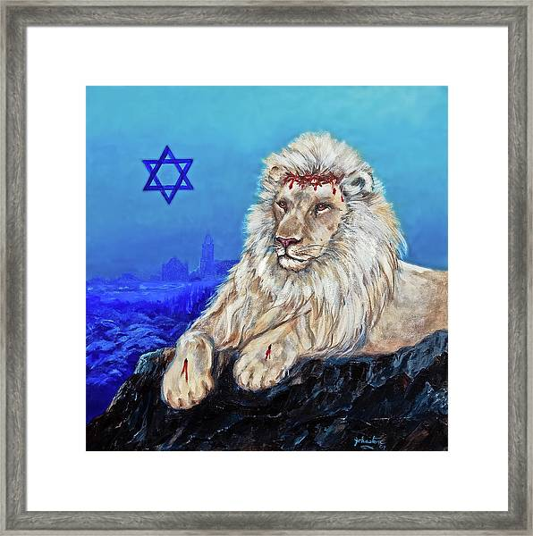 Lion Of Judah - Jerusalem Framed Print