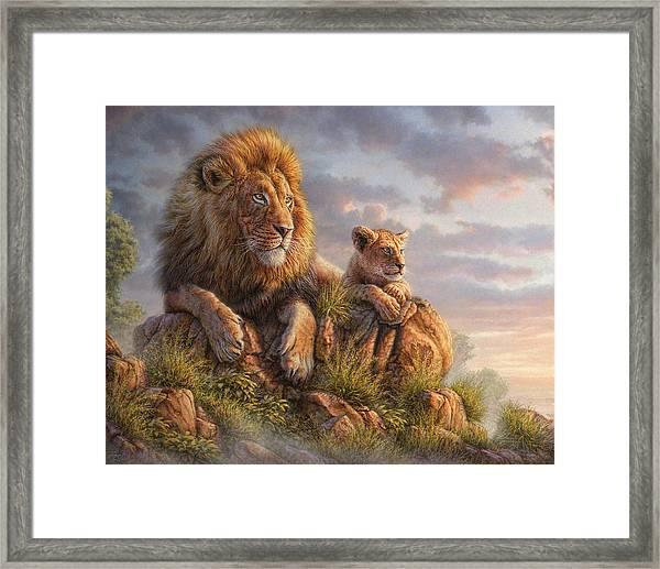 Lion Pride Framed Print
