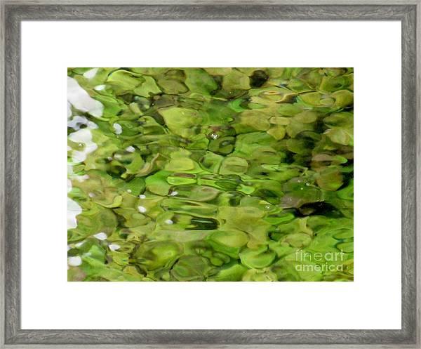 Lite Watery Green Framed Print