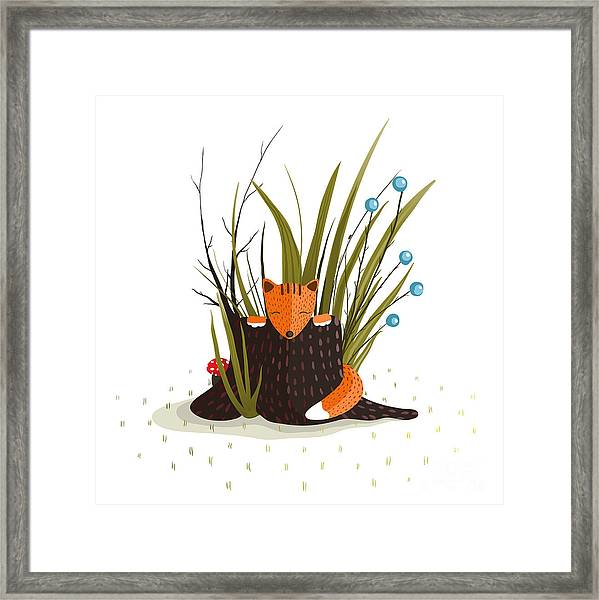 Little Fox Sitting In Forest Behind The Framed Print