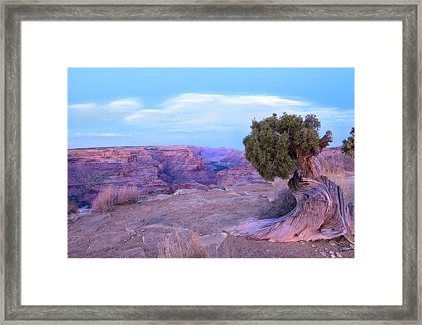 Little Grand Canyon Framed Print by Darryl Wilkinson