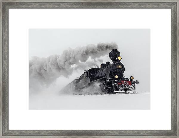 Little-jumbo Framed Print by