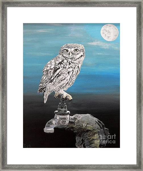 Framed Print featuring the painting Little Owl On Tap by Eric Kempson