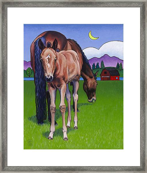 Littlebit Of Whidbey Framed Print by Stacey Neumiller
