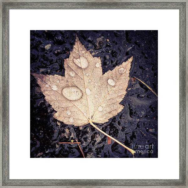 Live With Intention  Framed Print