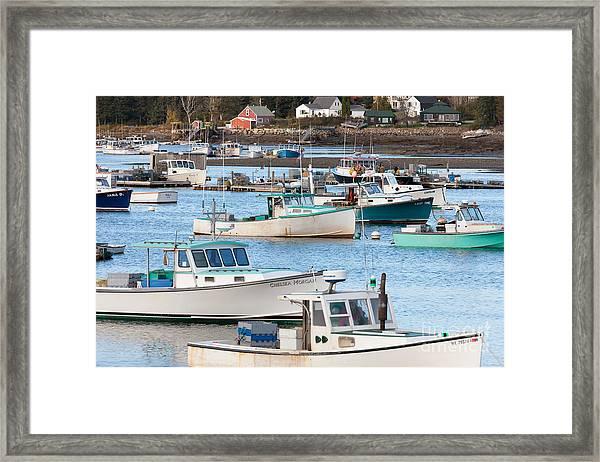 Lobster Boats In Bass Harbor I Framed Print