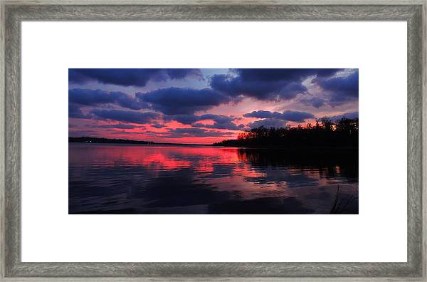 Locust Sunset Framed Print