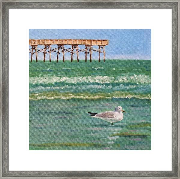 Lone Gull A-piers Framed Print