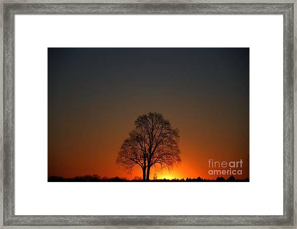 Lone Tree At Sunrise Framed Print