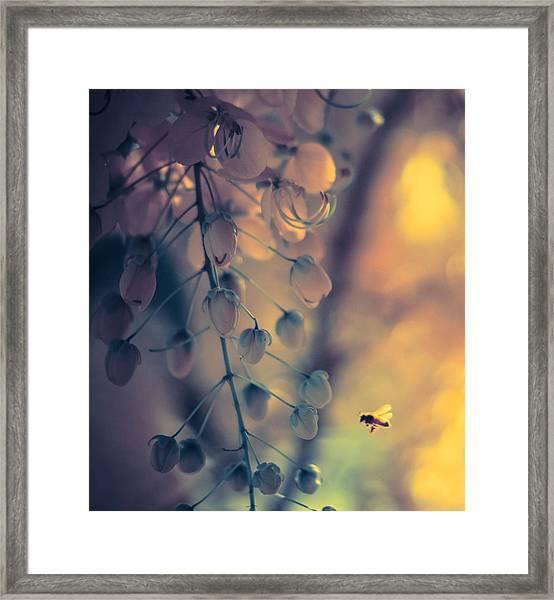 Lone Worker Framed Print