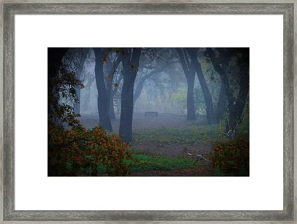 Lonely Park Bench In The Fog Framed Print