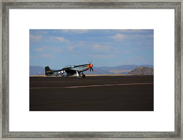 Lonely Pony Framed Print by John King