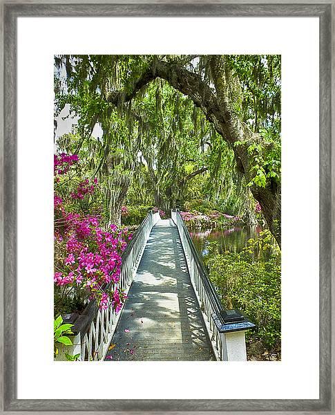 Long White Bridge Framed Print