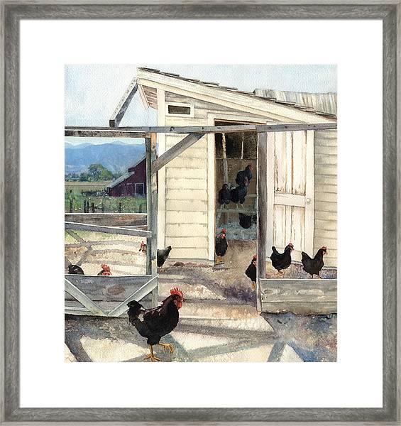 Longmont Henhouse Framed Print