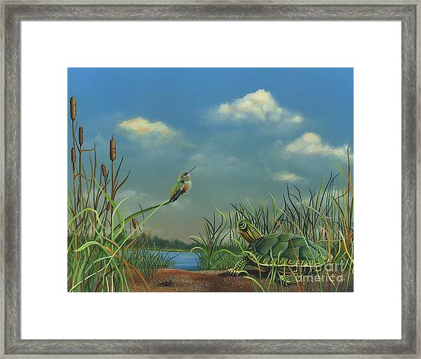Looking At Clouds Framed Print